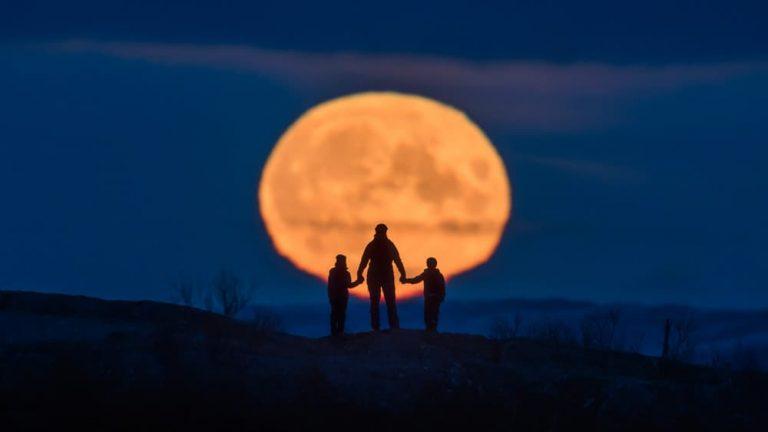 Måne familj